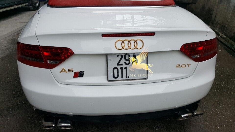 Mạ vàng logo Audi